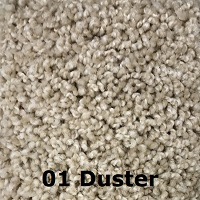 01 Duster carpet color