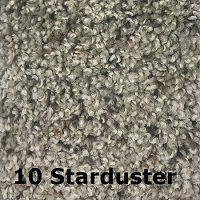 10 Starduster carpet color